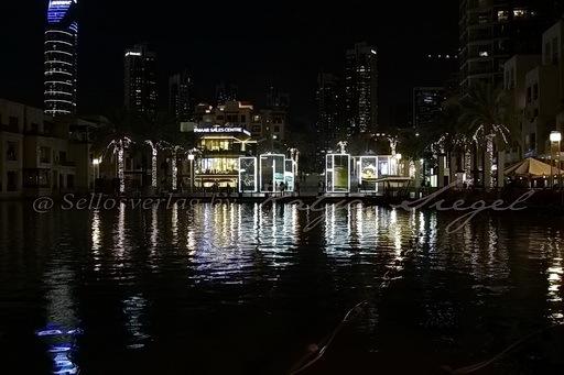 Dubai Night_15