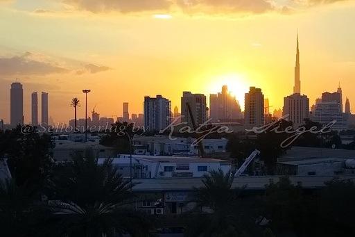 Dubai Night_22
