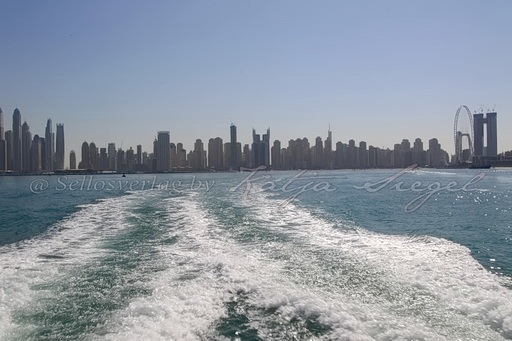 Dubai Skyline_5
