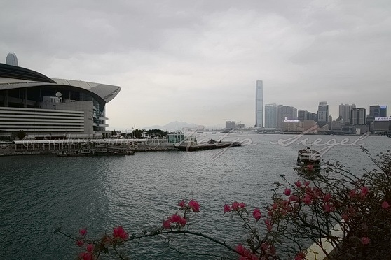 Hong Kong Convention and Exhibition Centre香港會議展覽中心.JPG_