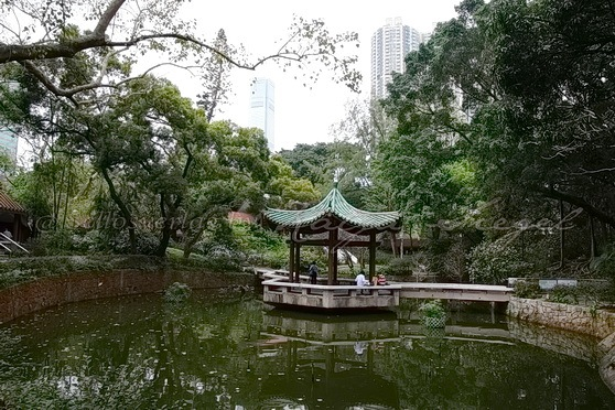 Kowloon Park Chinese Garden_5