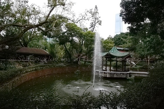 Kowloon Park Chinese Garden_6