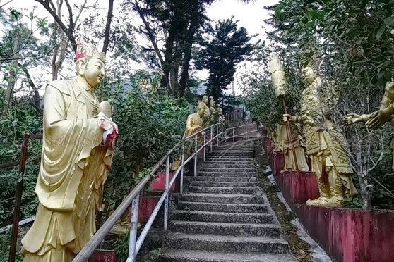 Sha Tin - Ten Thousand Buddhas Monastery 萬佛寺_1