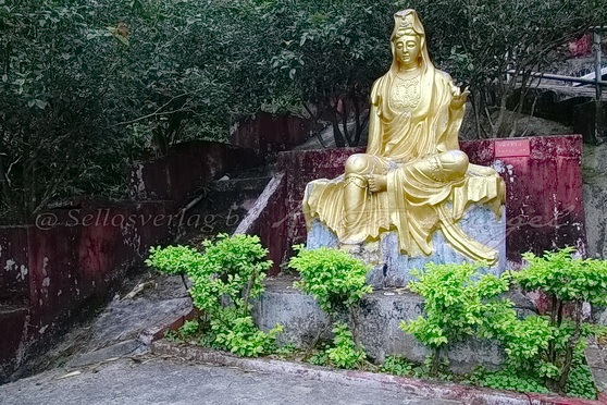 Sha Tin - Ten Thousand Buddhas Monastery 萬佛寺_3