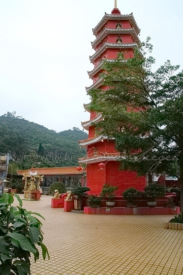 Sha Tin - Ten Thousand Buddhas Monastery 萬佛寺_7