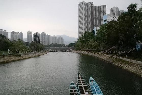 Tai Po - Tai Po River 大埔河
