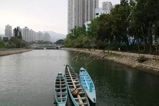 Tai Po - Tai Po River 大埔河-