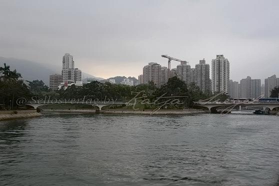 Tai Po - Tai Po River 大埔河_2