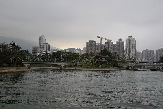 Tai Po - Tai Po River 大埔河_3