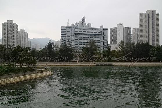 Tai Po - Tai Po River 大埔河__