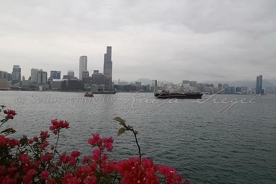 Wan Chai Ferry Pier灣仔渡輪碼頭_2