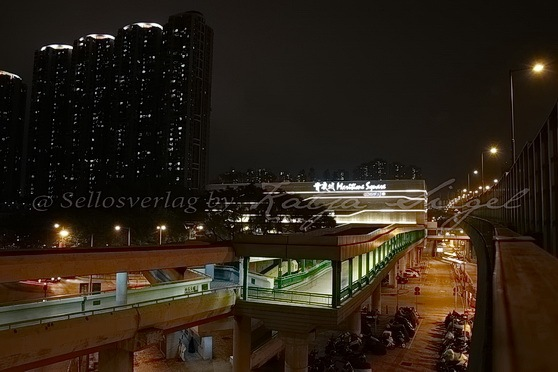 Xiqu Centre 戲曲中心(附停車場_1