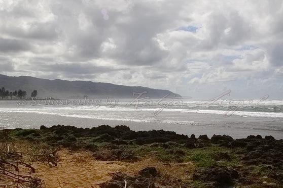 Haleʻiwa-Aliʻi-Beach-Park