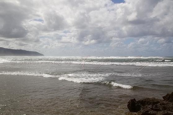 Haleʻiwa-Aliʻi-Beach-Park_2