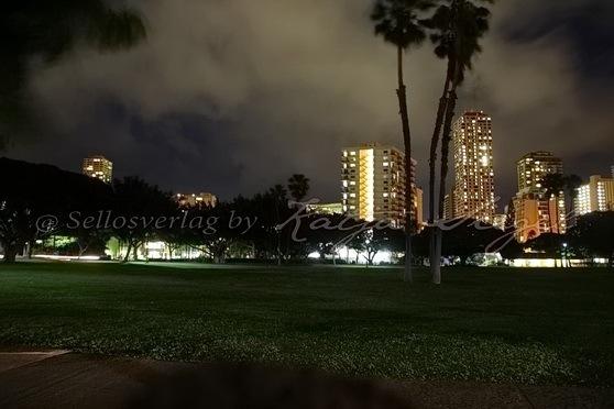 Honolulu_night_4