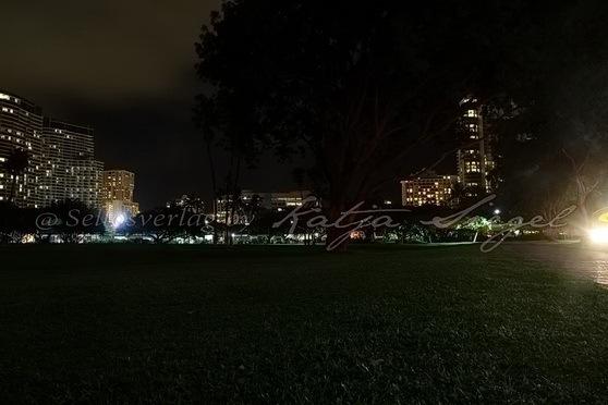 Honolulu_night_8