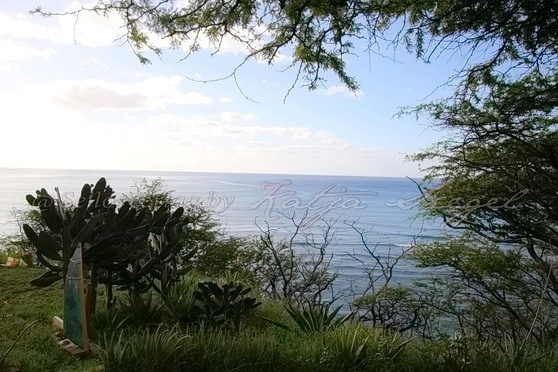 Kuilei-Cliffs-Beach-Park_5