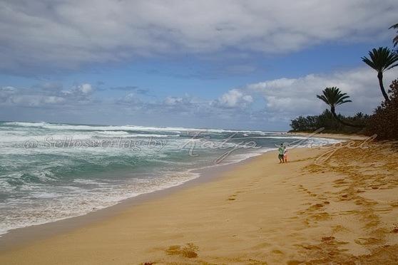 Sunset-Beach-Crooked-Palm-Tree_7