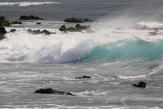 Wawamalu-Beach-Park_1