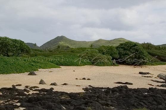 Wawamalu-Beach-Park_4