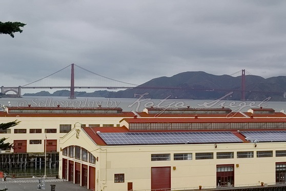 San Francisco_Ford_Mason